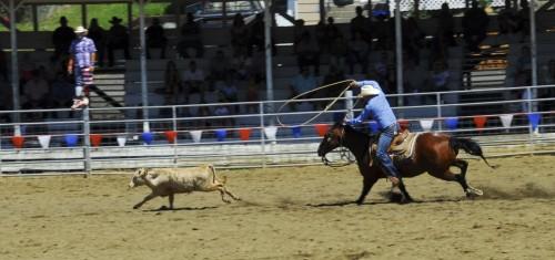 Rodeo i Grangeville, Idaho.
