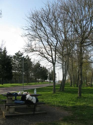 Rest place near Dijon, France.