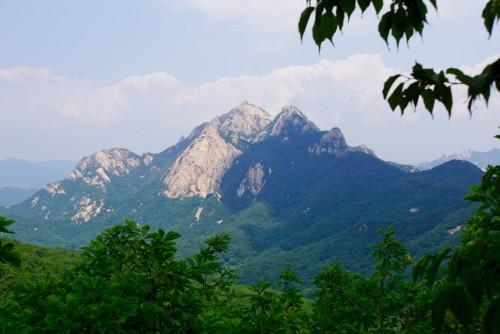 Den top jeg vandrede efter på turens sidste dag.