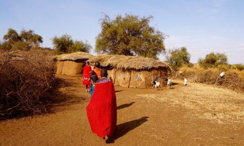 Nær centrum af Maasaibyen. Geder løb rundt, hvor de ville.