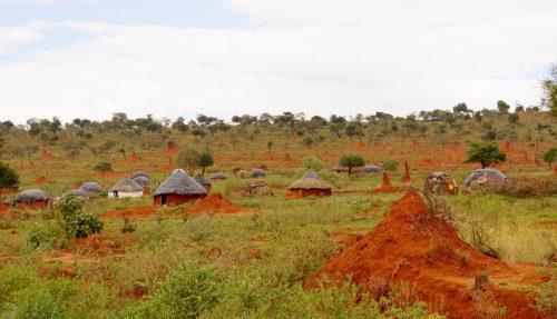 Kolortehuse og termitbo.
