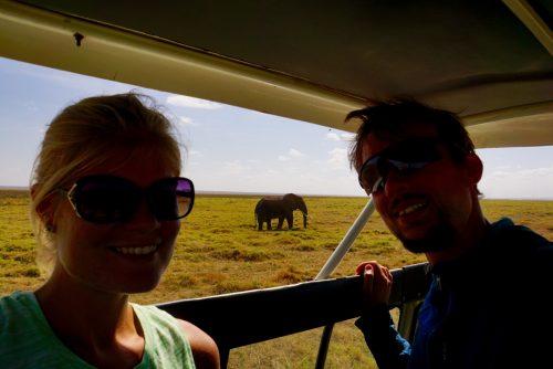 Elefant-selfie.