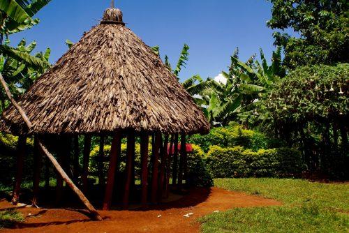 Hytten, hvori vi lærte om processen fra bønne på træ til kaffe i kop.