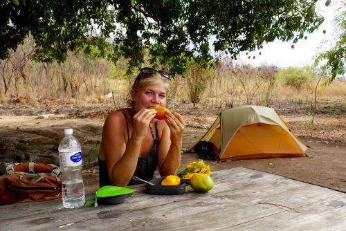 Der spises mango, når man bor under et mangotræ!