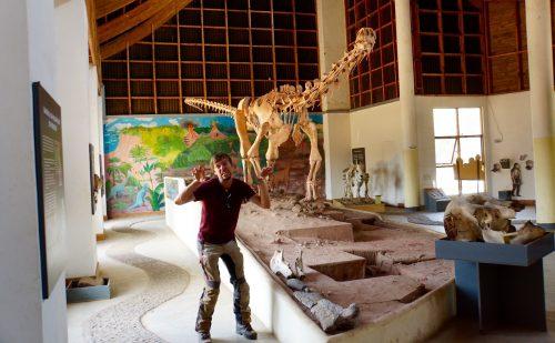 Den fredelige bladspisende Malawisaurus udstillet på Kultur og Museumscentret i Karunga.