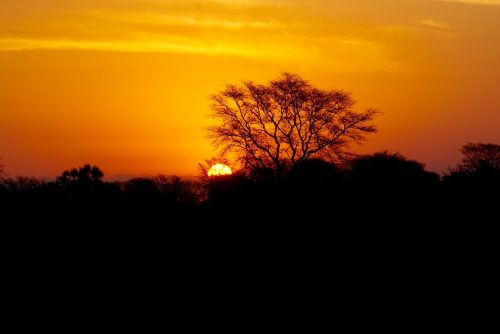 Solnedgang over Gorongosa Nationalpark.